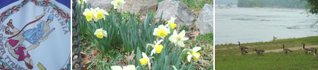Virginia State Bar's Corporate Counsel Section - Happy Spring!